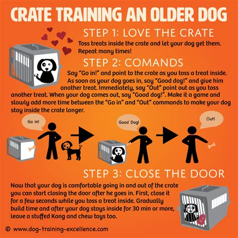 crate training crate training an older dog the positive way