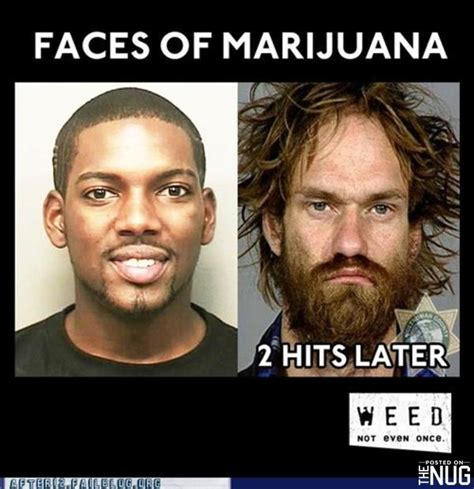 Funny Memes About Weed - funny marijuana memes the nug