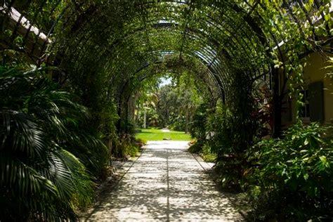 mckee botanical gardens mckee botanical garden vero visit florida