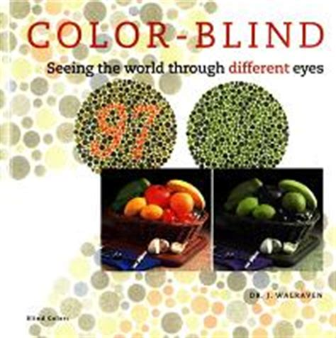 the colors through the eyes a color blind person 12 pics booklet on color blind vision colblindor