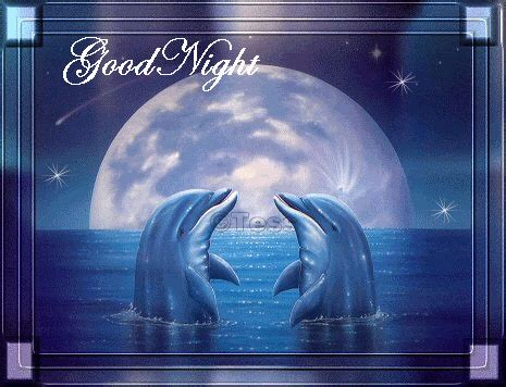 imagenes romanticas de good night delfines en anochecer