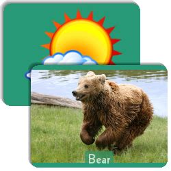 6 best images of zoo animal sorting card printables zoo 6 best images of zoo animal sorting card printables zoo