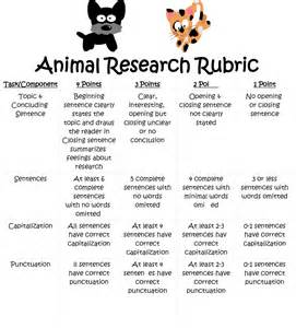 Research Paper 5th Grade Powerpoint by One Combination Amazing Animals Collaberative Research Project A Freebie