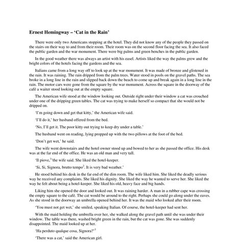 Cat In The By Ernest Hemingway Essay by The Cat Essay How To Write A An Essay