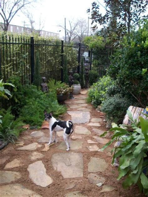 Information About Rate My Space Questions For Hgtv Com Landscaping Ideas For Backyard With Dogs