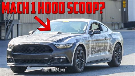 2019 Mustang Mach 1 by 2018 2019 Mustang Mach 1 Is It Happening