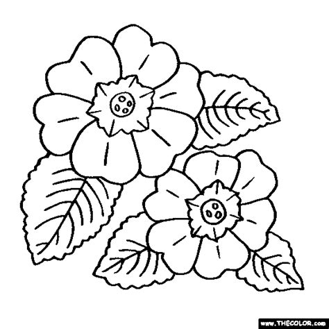 coloring pages of jungle flowers jungle flowers coloring pages www pixshark com images