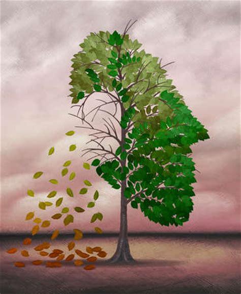 Leaf Shedding stock illustration tree shedding leaves