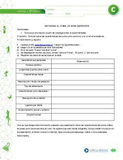 prueba de cadenas y tramas alimentarias cn06 oaa b curr 237 culum en l 237 nea mineduc gobierno de chile