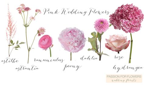 Wedding Pink Flowers by Pink Wedding Flowers For Flowers