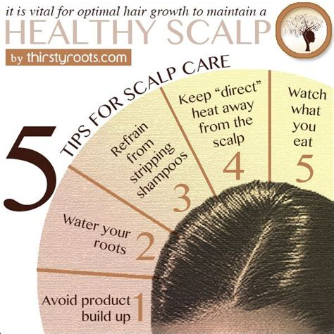 what is product buildup and how can it affect your hair 7 best images about infopics pictorials on pinterest