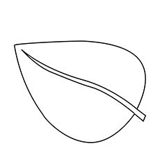 single leaf coloring page leaf coloring pages bestofcoloring com