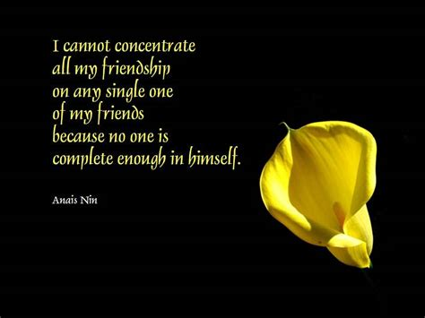 Quotes About And Friendship Friendship Quotes 3 Quotes Wallpaper