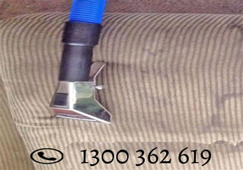 sofa steam cleaning sydney koala cleaning sydney new south wales 2000 australia