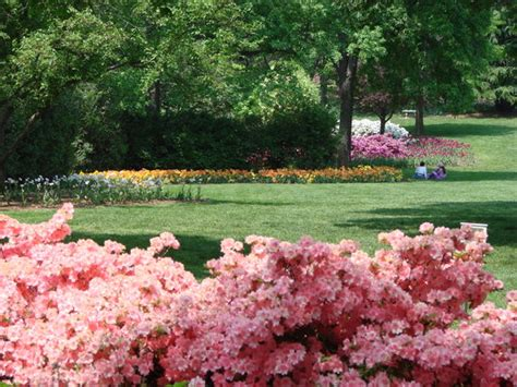 Sherwood Gardens Baltimore by Sherwood Gardens Reviews Baltimore Md Attractions