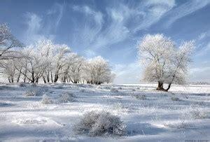 imagenes de invierno muy frio lecturas para el fr 237 o invierno pompas de papel
