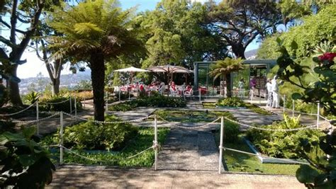 Madeira Botanical Gardens Madeira Botanical Garden Funchal 2018 All You Need To Before You Go With Photos