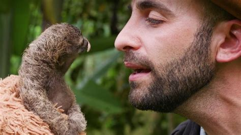 coyote peterson the slowest boop bored panda
