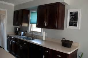 Java Stain Kitchen Cabinets by General Finishes Java Gel Stain Kitchen Cabinets