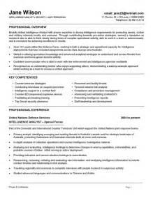 creative inspirations business intelligence resume