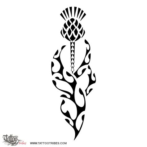 tribal thistle tattoo designs thistle stencil cliparts co