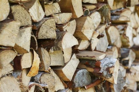 Burning Unseasoned Wood In Fireplace by Types Of Wood To Burn In A Fireplace Hunker