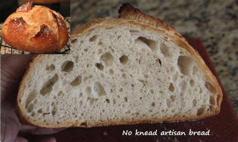 75 hydration dough interesting pic of gluten structure of