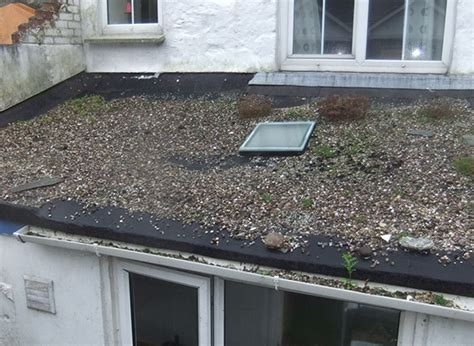 Flat Roof Problems Common Problems Found On Building Surveys