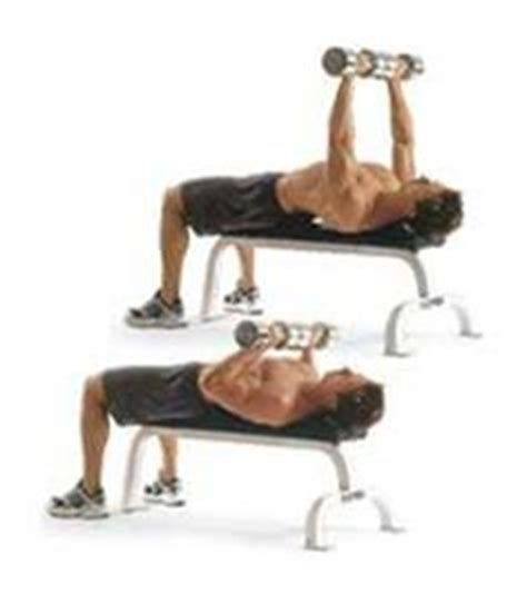 close grip bench press dumbbell 1000 images about 3 days gym on pinterest bench press google search and search