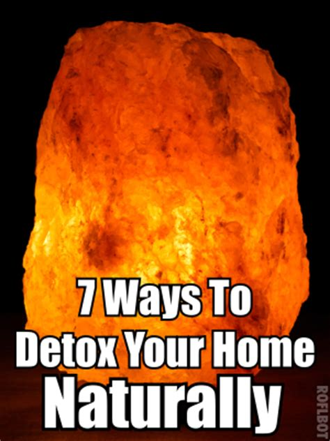 Ways To Detox At Home by 7 Surprising Ways To Detox Your Home Naturally