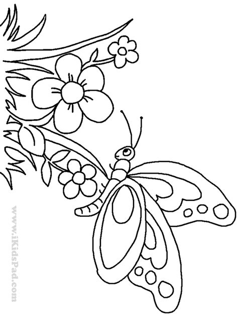printable little flowers coloring pages of little flowers file name cute free