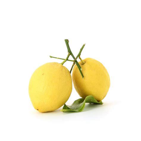 fauteuil jaune 547 pin jaune citron on