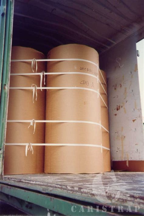 of the pulp and paper pulp paper caristrap international inc