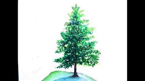 water color tree pine tree watercolor tutorial for beginners how to paint