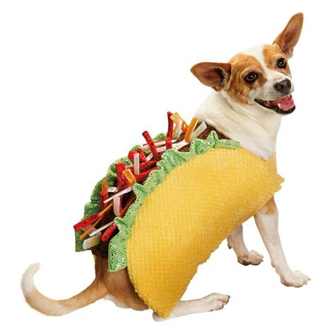 petco puppies make your stand out with this petco taco costume pets