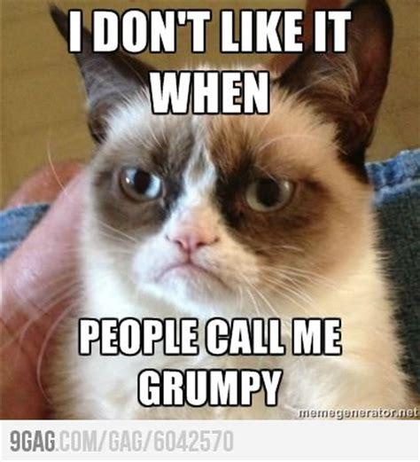 Meme Grumpy Cat - grumpy cat me memes