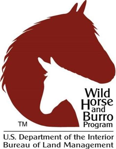 bureau of land management mustang adoption and burro bureau of land management