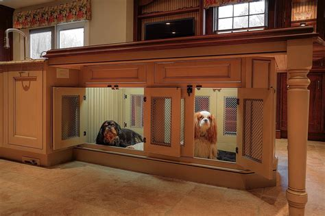 create  pet friendly kitchen