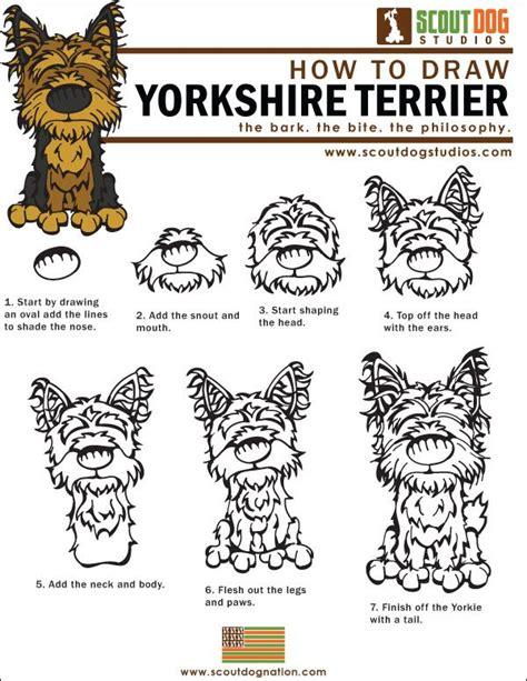 how to draw a yorkie how to draw a yorkie drawing