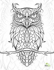 coloring books for adults free coloring pages to print free coloring
