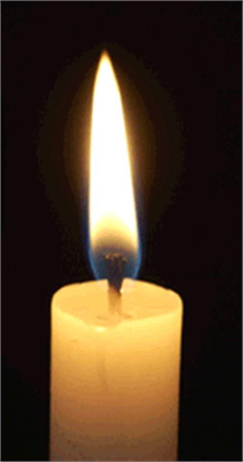 lade a candela peliculas de ciencias naturales ejercicios febrero 2011