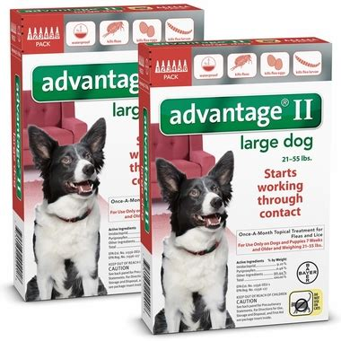 advantage for dogs 21 55 lbs 12 month advantage ii flea large for dogs 21 55 lbs