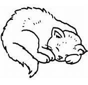 Cat 13 Coloring Page  SuperColoringcom