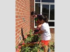 Growing Up Gardeners / Growing Up Gardeners Knightsville