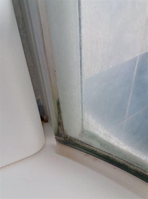 muffa doccia eliminare muffa doccia come pulire le fughe delle