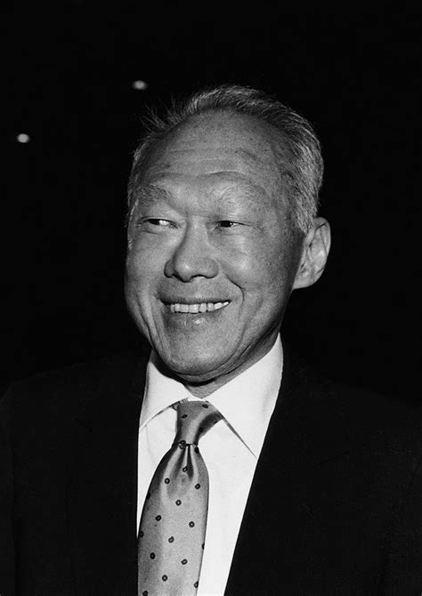 lee kuan yew the critical years 1971 1978 1990 german reunification and the new europe building