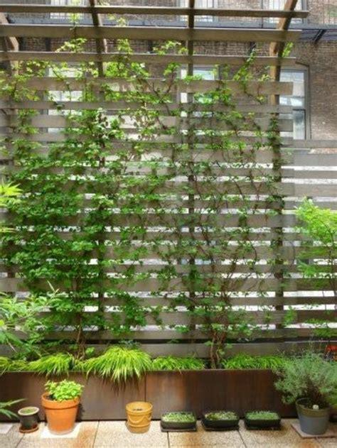 Garten Schön Machen 3001 by Kletterpflanzen F 252 R Balkon 27 Ideen Archzine Net