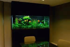 exotic interior decoration with aquarium aquarium 5000 gallon custom saltwater aquarium i would love a huge