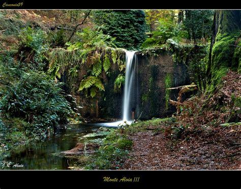 monte aloia nature park location monte aloia nature park spain google images artist s