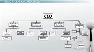Staff Organogram Template by What Is An Organogram Definition Structure Exle